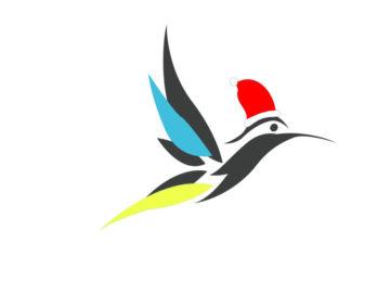 colibri noel